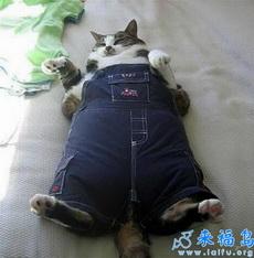 Mi amo me compró la ropa nueva.