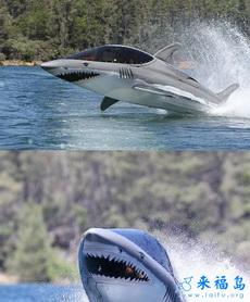 開著我的鯊魚戰艦去征服海洋