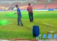 原来球场是这样变绿的