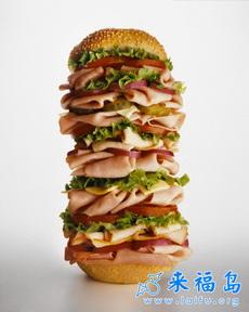 如果快餐店里的汉堡都是这样的就好了