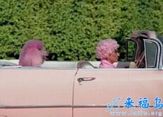 我家主人就是个粉色控