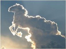真实的神马都是浮云