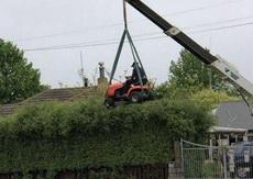 现在你知道园丁的活不是一般人能干的吧