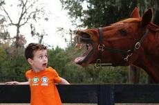 这小朋友被吓死了