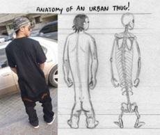 每当看到这样穿衣服的,我就在想他们是什么样的结构!