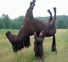 Mi caballo está muy cansado