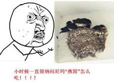 燕窝怎么吃啊