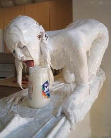 喝个奶,至于吗?被奶吃了吧!