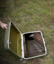 如果你有这样一个旅行箱,你想去哪