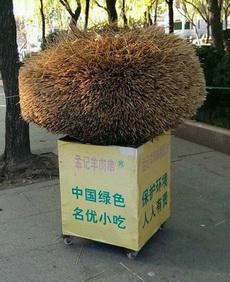 爆炸头的垃圾箱