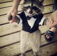 参加正式的宴会,当然穿正装啦