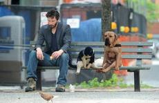 悲伤的狗与人