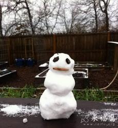 好呆萌的雪人