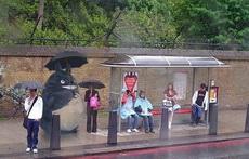 龙猫也等公交车