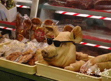 猪头也是帅哥