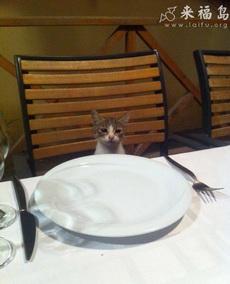 老板,点餐