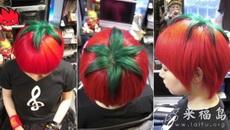 最大最可爱的西红柿
