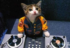 我是DJ,一起摇滚吧