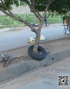 这轮胎有一定年龄了