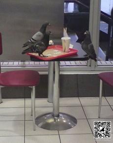 寂寞地吃快餐