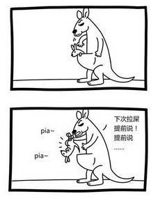 小袋鼠每天都要被袋鼠妈妈揍一顿!