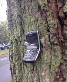 今天捡了个手机,这样失主应该好找了吧!