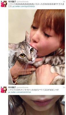 中川翔子的猫终于反击了····