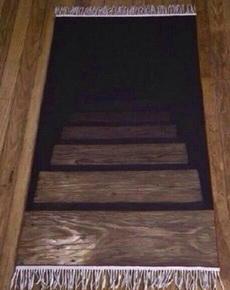 刚进朋友家,被他家地毯吓尿!