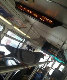 飞累了,咱也坐坐公交车