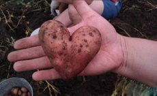 这颗土豆长得太有爱了!