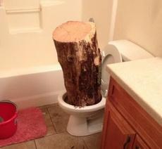 厕所这回是真堵了!