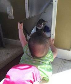 这才是躲猫猫!