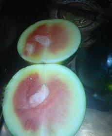 天气热买了个西瓜