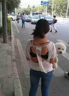 妹子的狗狗好可爱