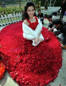 9999朵玫瑰,好美