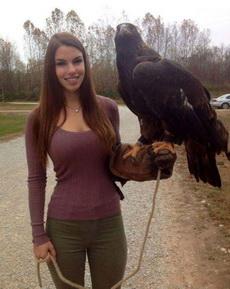 这鹰不错!