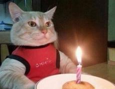给我唱生日快乐歌!
