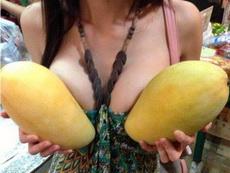 这种芒果可以做芒果布丁吗?