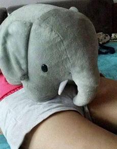 小象,放开那个妹子,让我来