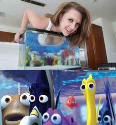 妹子你这样玩,海底总动员都看呆了