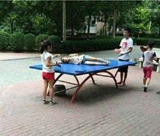 中国好队友