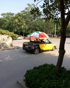 自己买的车,打伞也要开走