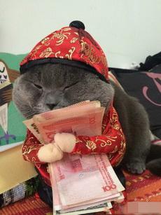 我啥都不爱,额只爱钱~