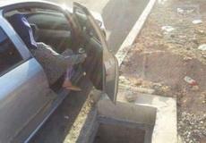 司机咋停的车