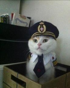 这制服穿起来太可爱了