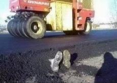 呃,司机你还好吗?