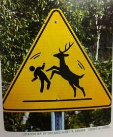 这个标志在提示什么?看不懂。