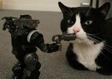 黑猫警长,你也有今天