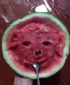 只能吃成这个猪样儿了!