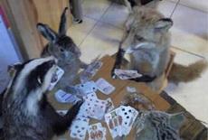 喜歡玩撲克